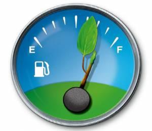 conducere ecologica
